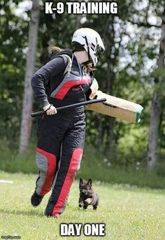 sign me up for day 1 of k-9 training!