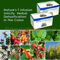 Myanmar Business Info: Nature's T Infusion Unicity  Herbal Detoxification...