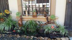 Jardin con piedras y troncos