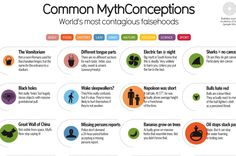 52 Of The Most Common Myths and Misconceptions Debunked In One Infographic