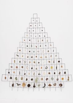Mari Andrews  Mari Andrews  Inventory of found objects  work evolved from drawing and excessive collecting
