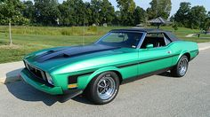 1973 Ford Mustang | Mecum Auctions
