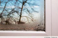 In dieser Anleitung erfahren Sie, wie Sie Schimmel an Silikon-Fensterfugen und Fensterdichtung entfernen und welche Hausmittel dabei wirklich helfen.