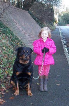 Rottweiler, a girl's best friend! .jpg (624×960)