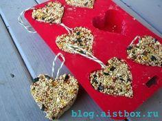 AistBox: 90 идей лета: Делаем кормушку для птиц!