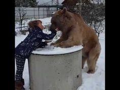 GIRL    AND    BEAR