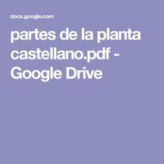 partes de la planta castellano.pdf - Google Drive