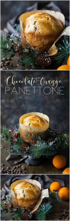 Take your holiday tradition to the next level with this chocolate orange panettone! Sweet, moist Italian yeast bread, studded with citrus and chocolate.