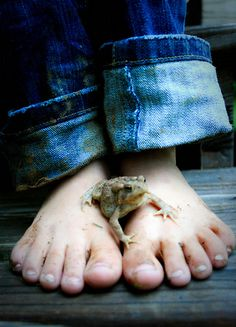 "Toed: A Series of Toad Toting Toes! Reminds me of my little brother, he was a frog and toad freak! He had twenty two warts on his pinky toe, ""Little Mr. Adventure"" love you DTM❤️ Country Life, Country Girls, Country Roads, Country Living, Jean Rostand, Frosch Illustration, Frog And Toad, Reptiles And Amphibians, Belle Photo"