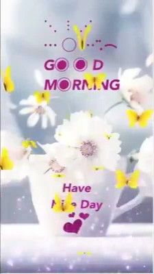 Good Morning Gif Funny, Good Morning Video Songs, Good Morning For Her, Good Morning Gift, Romantic Good Morning Messages, Good Morning Happy Thursday, Good Morning Beautiful Images, Good Morning Greetings, Good Morning Flowers Quotes
