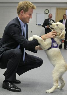 Prince Harry Visits Canine Partners Organization