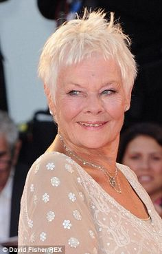 Dame Judi Dench pictured at the premier of the film Philomena last year. Click for photos and article about two Dames, Judi Dench and Maggie Smith who eschewed Botox and look great in their 80th year.