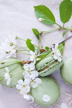 Pistachio Macaroons | Flickr - Photo Sharing!