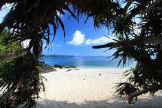 沖縄・座間味島 トウマの浜