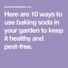 Here are 10 ways to use baking soda in your garden to keep it healthy and pest-free.