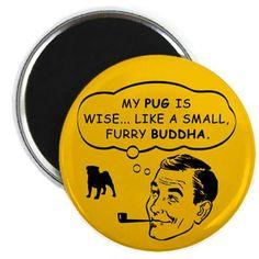 ya know...Pugs do have a healing power...haha