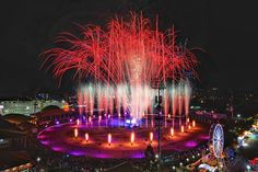 The amazing Ekka show action captured from our very own by - now that's what you call a room with a view