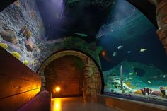 SEA LIFE Kansas City Aquarium by Crown Center