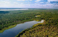 Ilha do Bananal e Rio Araguaia – Foto – Márcio Di Pietro. Na Ilha do Bananal, a diversidade de fauna e flora são preservadas no ecoturismo