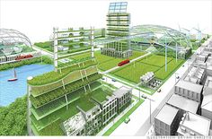 Urban Farming Proposal for Detroit, MI #YourNewDetroit