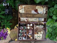 The Naturalist's briefcase.
