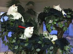Extra Large Cat Trees from ~A Fantasy Forest~