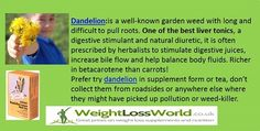 Dandelion excellent for fluid retention, blood cleansing and skin disorders, such as eczema  http://www.weightlossworld.co.uk/index.php?ps=dandelion=1=0=0