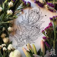 (by @anomalia12tattoo) • protea - #ink #art #botanical #drawing #flower #sketch #blacktattoo #blackwork #protea Botanical Drawings, Paganism, Ink Art, Black Tattoos, Blackwork, Drawing Sketches, Religion, Illustrations, Floral