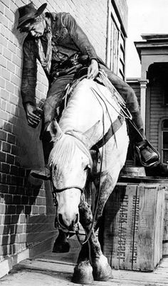 I believe that Lee Marvin admitted that this horse had a lot to do with him…