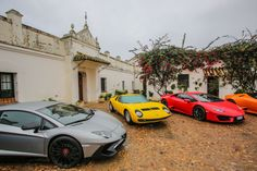"""Welcome to Lora del Rio, Andalusia. The Miura family's is one of the oldest """"ganaderías""""–bull breeding farms– in Spain, founded 175 years ago. Lamborghini Miura, Andalusia, Supercar, Rio, Classic Cars, Spain, Old Things, Travel, Garage"""