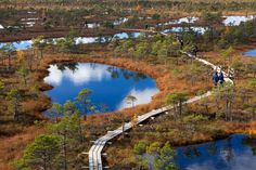 The Great Kemeri Bog nature trail in Kemeri National Park is new but popular travel destination in Latvia