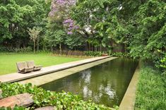 I had this size yard with my previous house. :(  stunning languid pool by isabel duprat