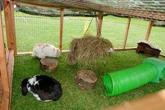 Lidt inspiration til når kaninerne er ude  http://www.kaninhaandbogen.dk #kaniner #udekaniner #kaninhaandbogen