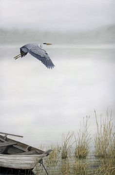 Great Blue Heron 12x18 Acrylic. Inspired by the many GBH's we saw while living on the Coan River in Va.
