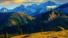 GoodPoland.com Rusinowa Polana   #tatry #tatra #mountains #bluesky #sun #nature #glade