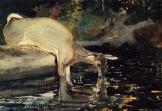 Winslow Homer -Deer Drinking
