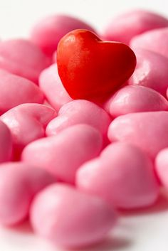Happy Valentine's Day Everyone!