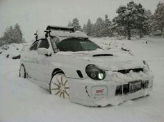 Subaru STI. This looks good in the snow.Please check out my website thanks. www.photopix.co.nz
