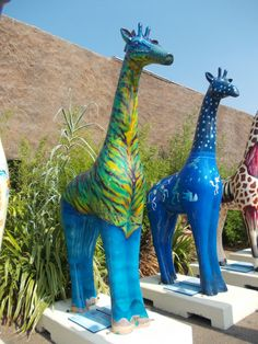 Colchester Zoo giraffe Zoo Giraffe, Giraffe Neck, Cute Giraffe, Colchester Zoo, Sad Eyes, Nutcrackers, Animal Sculptures, Great Pictures, Animal Paintings