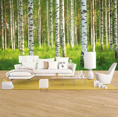 Birch Forest - Wall mural, Wallpaper, Photowall, Home decor, Fototapet