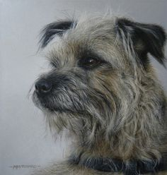 """""""Distracted"""" Border Terrier by Marc Mitchard, UK painter, b.1972"""