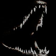Character Aesthetic, Punk, Homestuck, Looks Cool, Werewolf, Ushuaia, Hades, Horror, The Originals