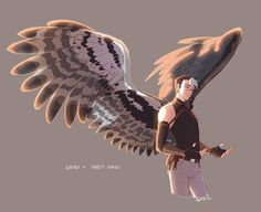 Shiro (I freaking love Harpy eagles *-*)