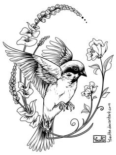 YSEULTA HERE WEE-OOH WEE-OOH Silly sparrow tattoo! We have a couple of cheap bird feeders suction-cupped to our wind. Sparrow Drawing, Sparrow Art, Tattoo Sketches, Tattoo Drawings, Golondrinas Tattoo, Sparrow Tattoo Design, Framed Tattoo, Tattoo Bird, Tattoo Templates