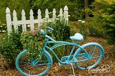 I have a bicycle in my garden, but need to paint it this year