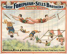 Triple Flying Trapeze Triumph.