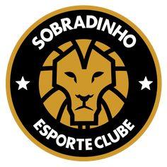Lion Logo, Football, Sports, Soccer, Lion, Coat Of Arms, Hs Sports, Futbol, American Football