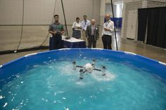 Quadcopter That Swims and Flies Could Be Used for Navy Special Ops  Its a bird! Its a fish! Its  the Naviator.  At the Office of Naval Researchs annual Science and Technology Expo on Friday in Washington D.C. a development team from Rutgers University demonstrated the unusual quadcopter which can swim at depths of up to 10 meters then seamlessly launch to the surface and soar into the air.  The drone developed with sponsorship from the Office of Naval Research shows promise as a tool for…