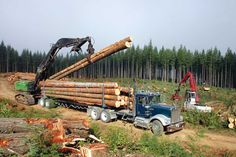 This section goes over an extensive list of policies passed throughout the history of the Forest Service. Each legislative bill passed has contributed to the way the service manages the forests. Heavy Duty Trucks, Big Trucks, Semi Trucks, Cat Construction, Logging Equipment, Forest Pictures, Kenworth Trucks, Forest Service, Industrial