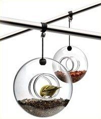 eva solo - Bird Table em vidro – Comedoura para passaros ideal para o jardim
